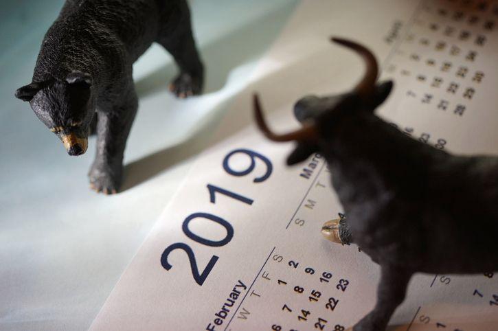 2019 bull.jpg
